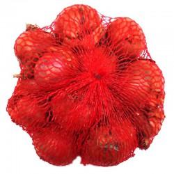 Cibuľa sadzačka ŠALOTKA červená guľatá BIZTRO 0,25kg